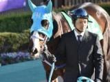 【次走】シャドウディーヴァは秋の府中牝馬Sから再始動