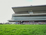 【JRA】新潟競馬場の入場取りやめ、新型コロナウイルス感染拡大の傾向鑑み
