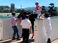 【フェニックス賞】ヨカヨカ連勝バイ!熊本県産馬初の平地オープンV