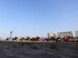 【地方競馬】PCR検査を行った騎手が陽性 本日(8月24日)の川崎競馬は取りやめ