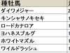 【小倉2歳S 血統データ分析】今年は2勝を挙げるダイワメジャーに注目が集まる
