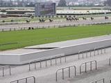 JRAが芝のクッション値を初公表 中山はやや硬めの10.8、中京は標準の9.9