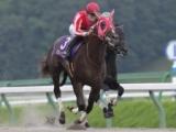 【白山大賞典】(9月29日、金沢) JRA所属の出走予定馬および補欠馬について