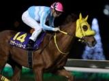 【日本テレビ盃】(9月30日、船橋) JRA所属の出走予定馬および補欠馬について