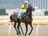 【次走】京成杯AH連覇のトロワゼトワルは府中牝馬Sを視野に、引き続き横山典弘騎手とコンビ