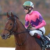 【海外競馬】P.スマレン元騎手が死去、43歳 アイルランドで9度のリーディング獲得