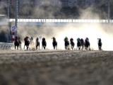 【地方競馬】11/1からの大井競馬場は引き続き事前抽選で入場を実施