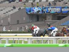 東京、京都、新潟競馬場でファン入場再開