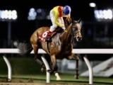 【川崎・サルビアC】11番人気ヒキュウが準重賞V、2冠牝馬アクアリーブル敗れ波乱の結末