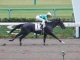 【東京4R新馬戦結果】シーオブドリームスが5馬身差で圧勝