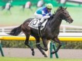 【東京5R新馬戦結果】ヴィクトゥーラが内から抜け出し快勝