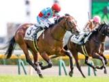 【東京5R新馬戦結果】2番人気ヴァイスメテオールが初陣飾る