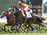 【京都5R新馬戦結果】グロリアムンディが差し切り新馬勝ち