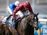 【海外競馬】2000ギニー覇者カメコは年内で引退、種牡馬入り 次走はBCマイルへ