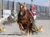 【地方競馬】ばんえいの西弘美調教師が歴代25人目の通算1000勝を達成!