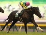 【富士S想定騎手】サトノアーサーは戸崎圭太騎手、ラウダシオンはM.デムーロ騎手
