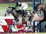 【富士S予想オッズ】3歳牝馬スマイルカナが人気の中心