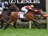 【香港マイル】日本馬22頭、豪ディープ産駒フィアースインパクト、地元のビューティージェネレーションらが登録