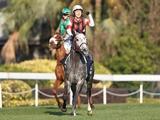 【香港C】登録馬69頭中31頭がG1馬 アーモンドアイ、ウインブライト、マジカル、アデイブなど