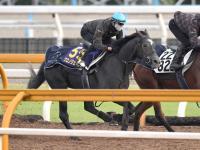 【天皇賞】クロノジェネシス真ん中ラッキー 2勝含む4連対中の7番ゲット