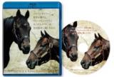 ディープインパクト・キングカメハメハ追悼BDが完成 売上金は「引退名馬繋養展示事業」に寄附