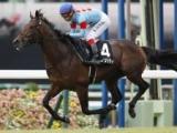 【アルゼンチン共和国杯 出走馬・騎手確定】オーソリティ&ルメール騎手、メイショウテンゲン&池添謙一騎手など18頭