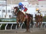 【地方競馬】園田金盃はファン投票で出走馬を選出、10日より投票開始