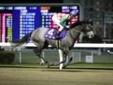 【川崎・ローレル賞予想】鎌倉記念で1番人気のナジャが牝馬限定戦で巻き返しを狙う!