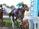 【地方競馬】2021年度の南関東競馬の重賞日程を発表 ゴールドCがSIに、埼玉新聞栄冠賞は2000mに