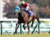 【京都ジャンプS想定騎手】オジュウチョウサンは主戦・石神深一騎手!