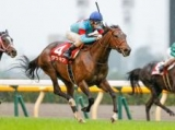 【エリザベス女王杯展望】秋の女王決定戦、あの馬の好走を期待したい