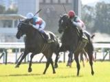 【東京スポーツ杯2歳S】登録馬 ヴェローチェオロ、ジュンブルースカイなど10頭