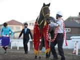 【浦和記念】ウェスタールンド、クインズサターン、タービランスなど予備登録馬が発表