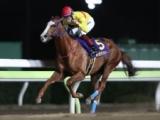 【大井・サンタアニタT】売得金は前年比76.9%の4.1億円 ワークアンドラブが6馬身差圧勝