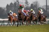 【JRA】有馬記念が行われる中山は2542席 12月からの中山・阪神・中京競馬場も指定席の事前購入限定で入場を実施