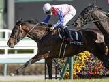 【ジャパンC】逃げ馬トーラスジェミニは田辺裕信騎手とのコンビで参戦