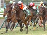 【京都2歳S想定】1勝馬9頭が登録予定、アイビーS2着ラーゴムは武豊騎手