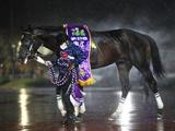 【チャンピオンズC想定】砂の王者クリソベリルは川田将雅騎手、3歳馬カフェファラオはC.ルメール騎手