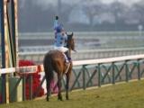 【次走】ブラストワンピースは有馬記念へ向かう、2年ぶりのグランプリ2勝目を目指す