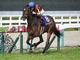 【マイルCS・馬体重】グランアレグリアは502kg(-2)、レシステンシアは500kg(+24)