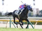 【東京5R新馬戦結果】タケルジャックが好位から抜け出しV