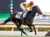 【東京6R新馬戦結果】世界的良血馬オンラインドリームが人気に応えてV