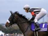 【ジャパンC展望】近年は内前決着が続く一戦、あの馬の食い込みを期待したい
