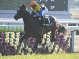 【次走】ヴェロックスは中日新聞杯で復帰、引き続き川田騎手とのコンビ