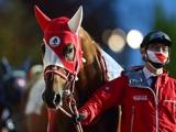 【JRA】モズアスコットはチャンピオンズCで引退、種牡馬入りへ