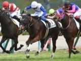 【阪神6R新馬戦結果】6番人気ティフォーザが激戦を制す