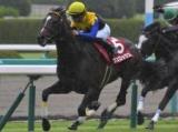 【中日新聞杯】登録馬 ヴェロックス、サトノガーネットなど23頭