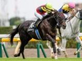 【中日新聞杯 想定騎手】グロンディオーズはC.ルメール騎手、ギベオンは岩田望来騎手