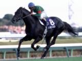 シンボリクリスエスが死亡 有馬記念、天皇賞・秋を2度制覇の名馬