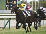 【阪神5R新馬戦結果】外国産馬エリザベスタワーが差し切りV
